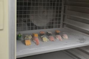 高級寿司も弊社の冷凍テクノロジーでカチカチです!