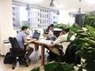 2017年に業務拡大に伴い移動した新しいオフィスです。緑がたくさんあり、カフェのような雰囲気です。
