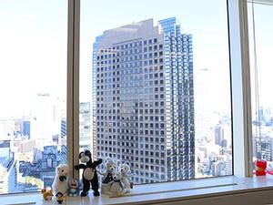 オフィスは、駅チカ!見晴らしも良く、オシャレなオフィスです!
