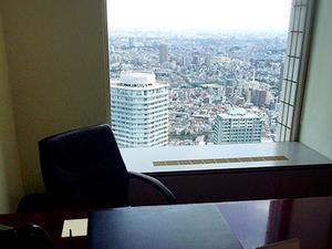オフィスの入るサンシャイン60からの風景です。45階からの眺めはとても見晴らしがいいです!