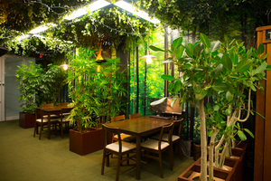 ジャングルをイメージした商談スペース。「お客様が来客してくれる」仕組みを作る狙いがあります。